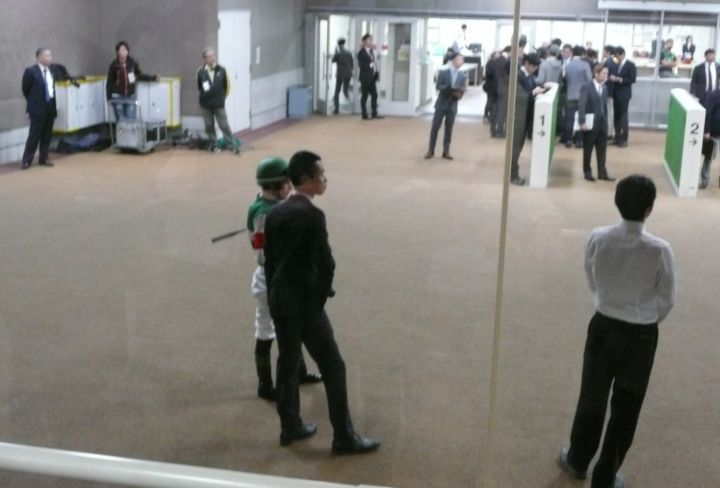 [ストライクイーグル] 4歳11月 17戦目 東京競馬場へ現地観戦!