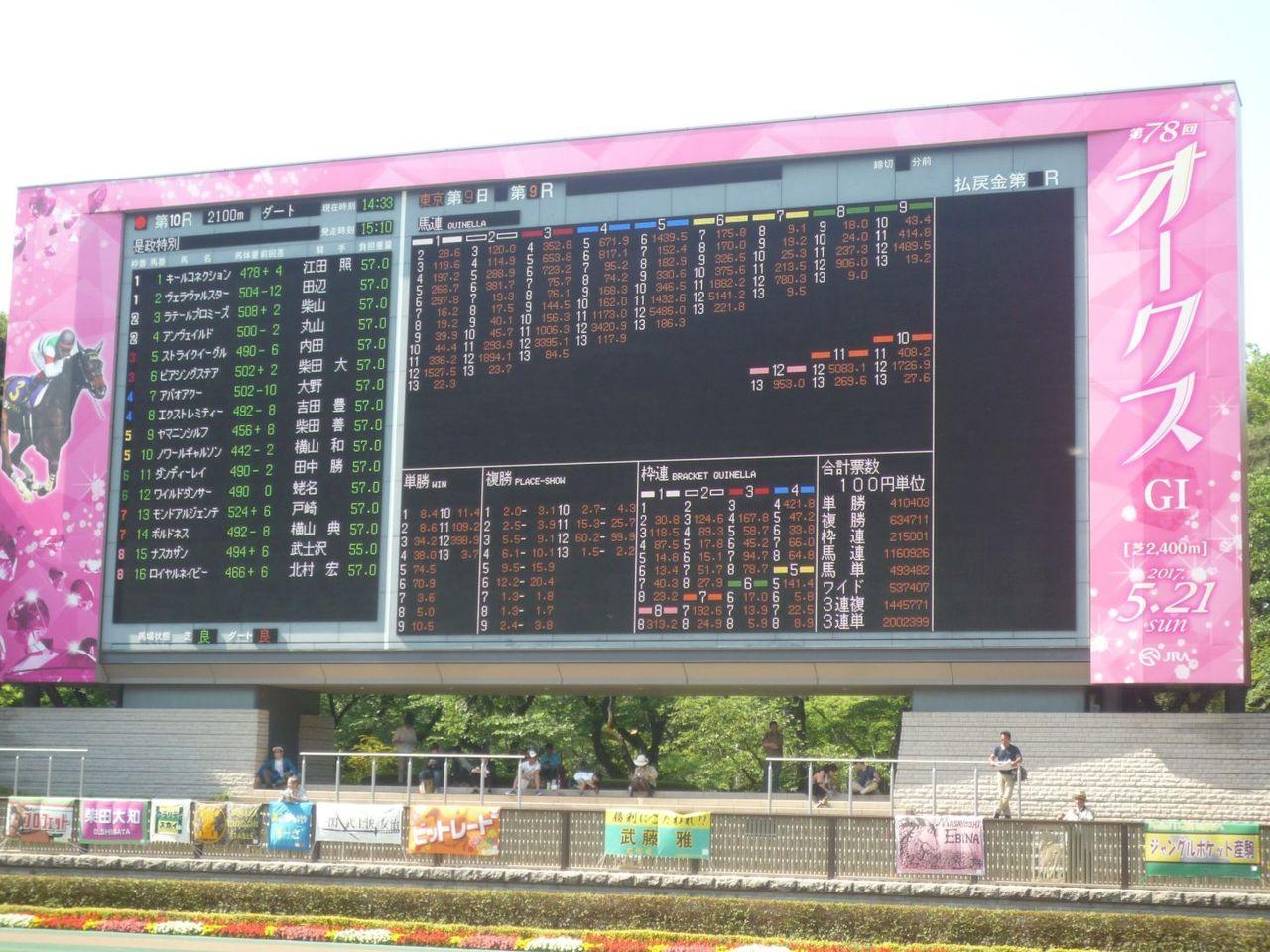 [ストライクイーグル] 4歳5月 13戦目 是政特別!東京競馬場で現地応援! 3