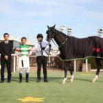 [雑感] 桜花賞を勝ったデアリングタクト!の杉山厩舎について語りたい 30