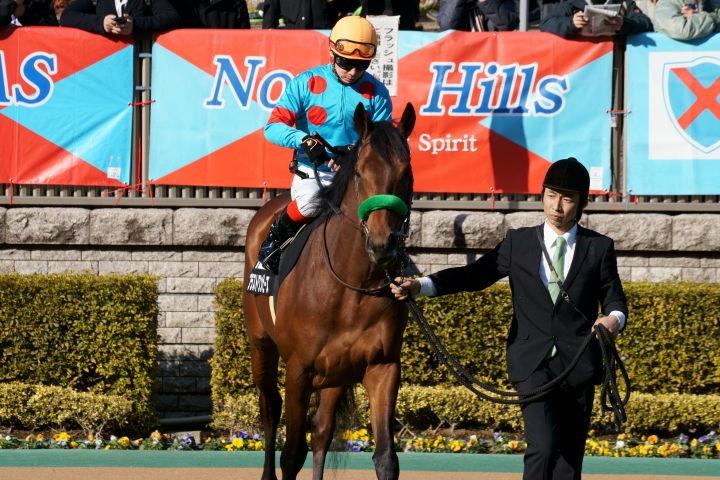 [競馬観戦] 東京新聞杯の東京競馬場に行ってきました 13