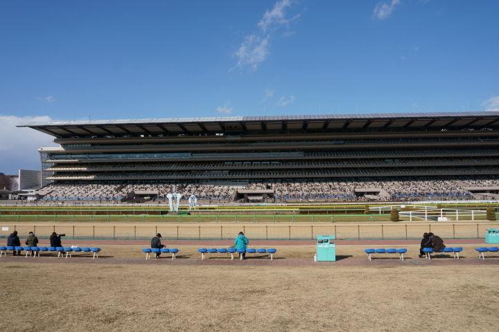 [競馬観戦] 東京新聞杯の東京競馬場に行ってきました 10