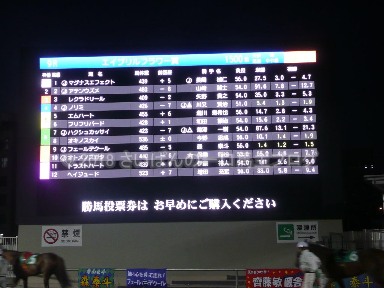 [フェールデクール] 3歳4月 4戦目 川崎のエイプリルフラワー賞 走りました編 2
