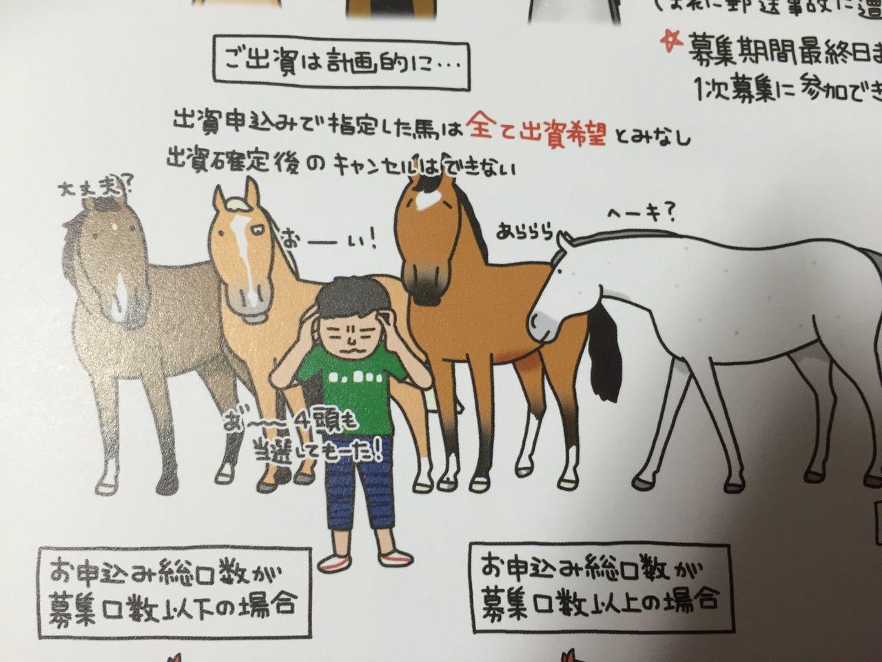 [出資検討] キャロット2017年度募集馬カタログと測尺で悲喜交交 2