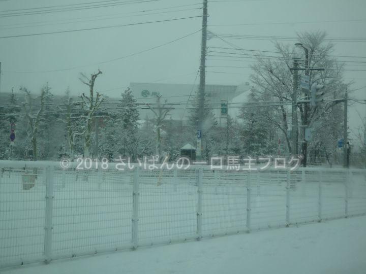 [牧場見学] 北海道2日目 メインは社台スタリオンステーションとノーザンファーム早来牧場見学 2