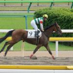 [エンジェルウィング] 3歳8月 再来週ぐらいの札幌競馬を目標に帰厩! 6