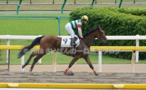 [エンジェルウィング] 3歳8月 再来週ぐらいの札幌競馬を目標に帰厩! 11