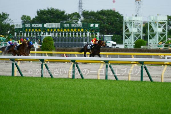 [競馬観戦] オークス前日の東京競馬場の風景 2
