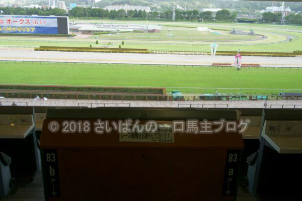 [競馬観戦] オークス前日の東京競馬場の風景 6