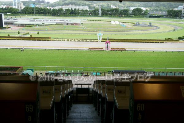 [競馬観戦] オークス前日の東京競馬場の風景 7