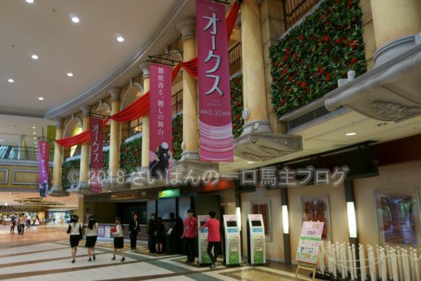 [競馬観戦] オークス前日の東京競馬場の風景 8