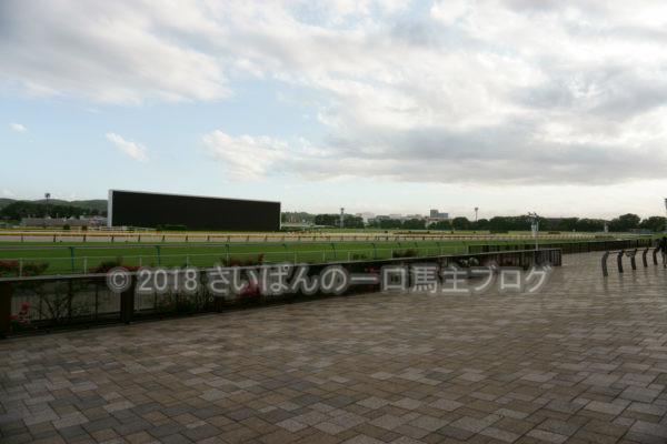 [競馬観戦] オークス前日の東京競馬場の風景 13