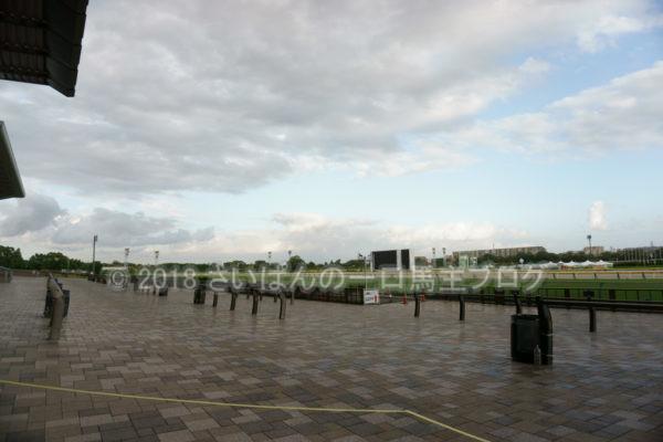 [競馬観戦] オークス前日の東京競馬場の風景 12