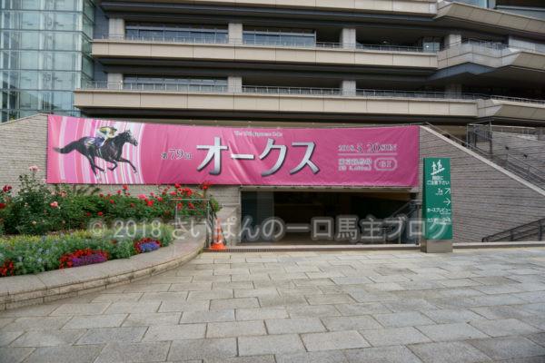 [競馬観戦] オークス前日の東京競馬場の風景 15