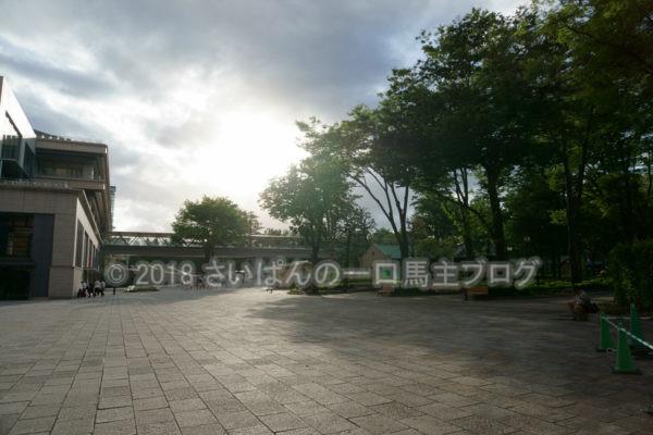 [競馬観戦] オークス前日の東京競馬場の風景 14