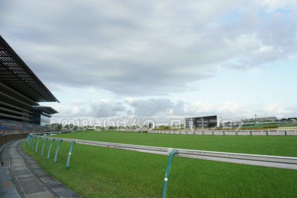 [競馬観戦] オークス前日の東京競馬場の風景 20