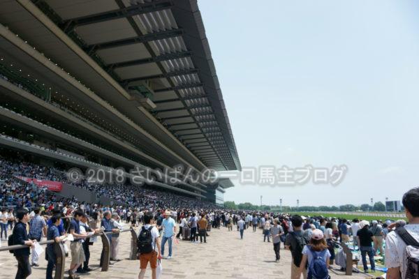 [競馬観戦] 日本ダービー当日の東京競馬場・内馬場からの風景 11