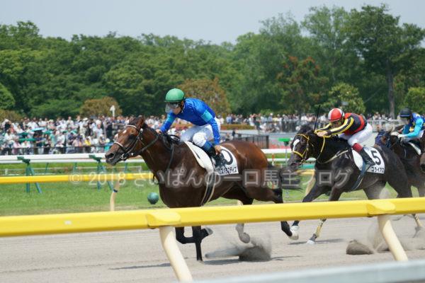 [競馬観戦] 日本ダービー当日の東京競馬場・内馬場からの風景 12
