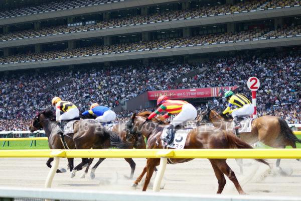 [競馬観戦] 日本ダービー当日の東京競馬場・内馬場からの風景 16