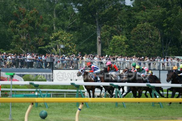 [競馬観戦] 日本ダービー当日の東京競馬場・内馬場からの風景 17