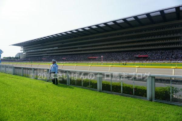 [競馬観戦] 日本ダービー当日の東京競馬場・内馬場からの風景 23