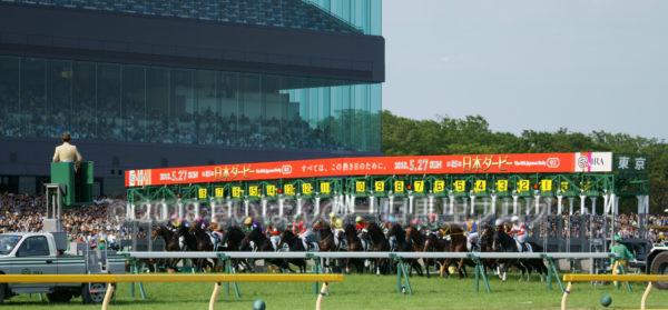 [競馬観戦] 日本ダービー当日の東京競馬場・内馬場からの風景 24