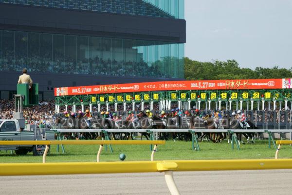 [競馬観戦] 日本ダービー当日の東京競馬場・内馬場からの風景 25