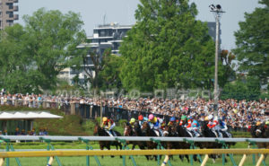 [競馬観戦] 日本ダービー当日の東京競馬場・内馬場からの風景 45