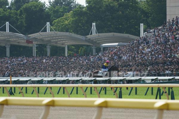 [競馬観戦] 日本ダービー当日の東京競馬場・内馬場からの風景 31