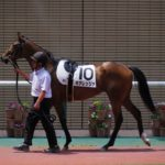 [キアレッツァ] 2歳7月 新潟開催のうちに2戦目を検討していけるかも 44