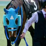 [競馬観戦] オジュウチョウサン目当てに4週連続の東京競馬場へ@18年11月 52