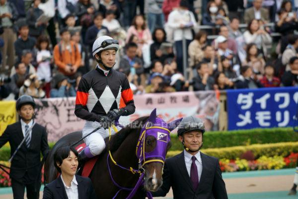 [競馬観戦] オジュウチョウサン目当てに4週連続の東京競馬場へ@18年11月 11