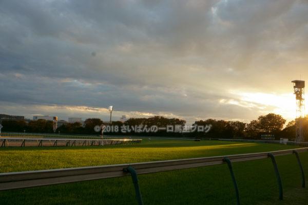 [競馬観戦] オジュウチョウサン目当てに4週連続の東京競馬場へ@18年11月 12