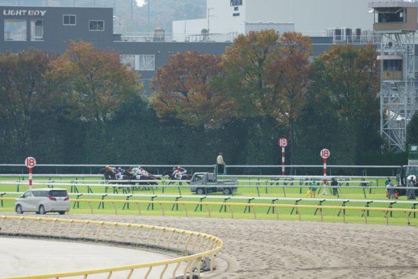 [アップライトスピン] 2歳11月 デビュー戦 東京5R芝1800を競馬場へ現地観戦 7