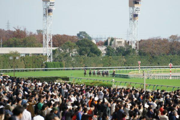 [アップライトスピン] 2歳11月 デビュー戦 東京5R芝1800を競馬場へ現地観戦 8