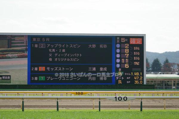 [アップライトスピン] 2歳11月 デビュー戦 東京5R芝1800を競馬場へ現地観戦 18