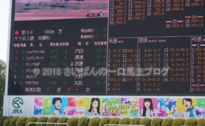 [アランブレラ] 3歳2月 デビュー戦 中山競馬場現地観戦! 1