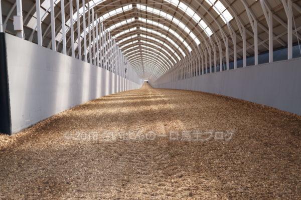 [牧場見学] 2019年春の北海道牧場見学行ってきました(出資馬見学編) 2
