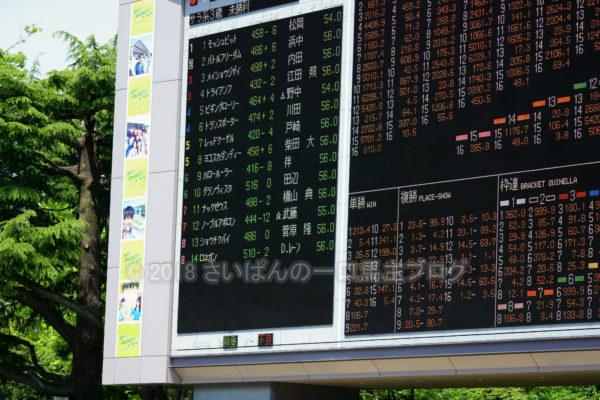 [グランヴィスタ] 3歳5月 3戦目 3歳未勝利戦を東京競馬場現地観戦 2