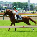 [グランヴィスタ] 3歳5月 3戦目 3歳未勝利戦を東京競馬場現地観戦 19