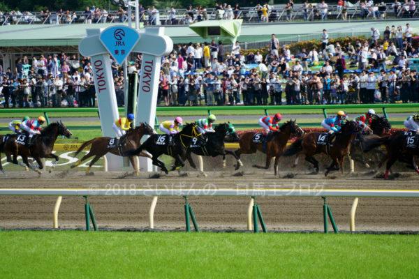 [ストライクイーグル] 6歳5月 24戦目 ブリリアントSを東京競馬場で現地観戦 8