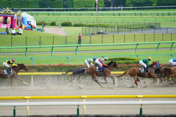 [ストライクイーグル] 6歳6月 25戦目 スレイプニルSを東京競馬場で現地観戦 5