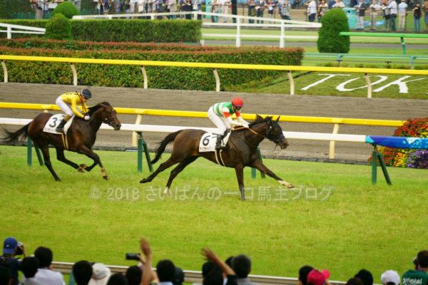 [アップライトスピン] 3歳6月 3戦目 1勝クラス牝馬限定戦(芝1800)を東京競馬場現地観戦