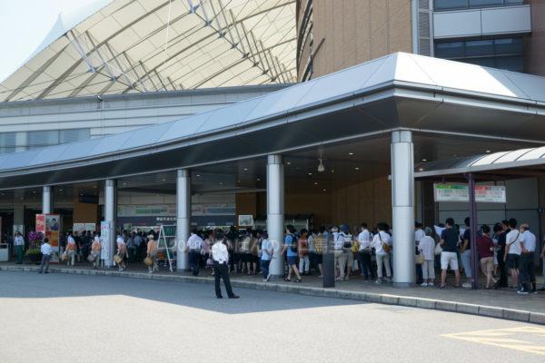 新潟競馬場へ日帰りで行って帰ってきました 27