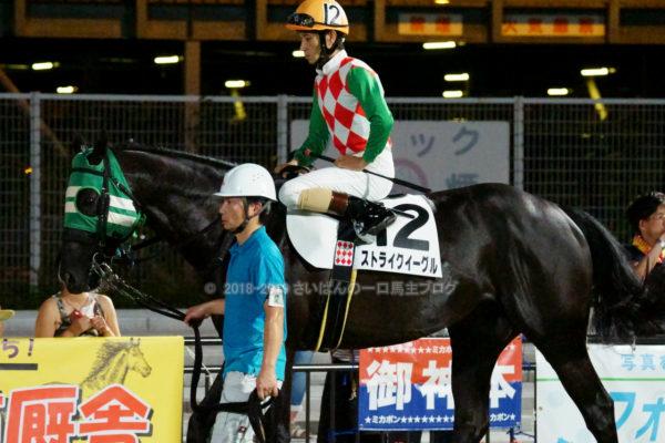 [ストライクイーグル] 6歳8月 26戦目 東京記念トライアルを大井競馬場で現地観戦 6