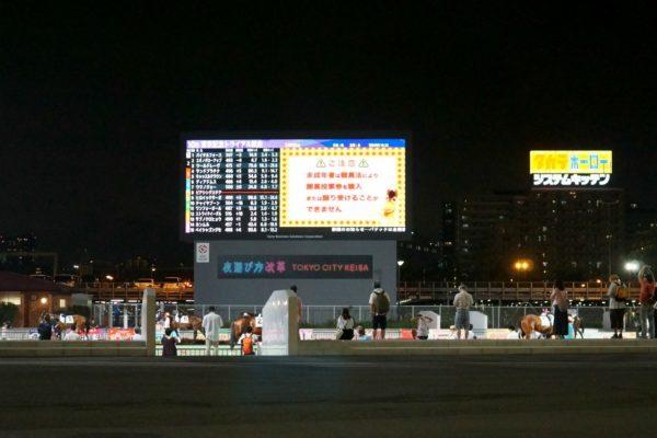 [ストライクイーグル] 6歳8月 26戦目 東京記念トライアルを大井競馬場で現地観戦 1
