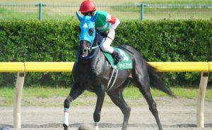 [ヴァイトブリック] 4歳4月 10戦目 東京競馬(鎌倉S・ダ1400m)にヒューイットソン騎手で出走 6