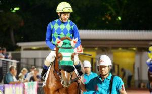 [アランブレラ] 4歳10月 中央再転入の際は、美浦・尾関知人厩舎へ預託・そして帰厩しました 21