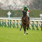 [アップライトスピン] 4歳4月 7戦目 東京競馬(石和特別・芝1800m)に大野騎手で出走 29