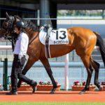 タイズオブハート 20.04.04 阪神1R 未勝利戦