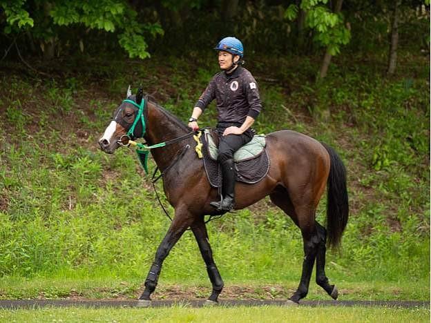 [クローヴィス] 2歳7月 しがらきに移動して坂路では15-15、馬体重は468キロ 11